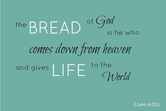 John 6.33