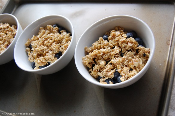 Blueberry Crisp unbaked